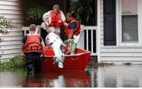 Memes, Roger, and Hurricane: AP Photo/Gerry Broome Roger Hedgepeth and his dog Bodie are helped by members of the @uscg in Lumberton, North Carolina, following flooding from Hurricane Florence.