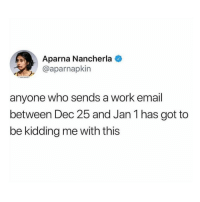 Memes, Twitter, and Work: Aparna Nancherla  @aparnapkin  anyone who sends a work email  between Dec 25 and Jan 1 has got to  be kidding me with this I'll answer that next year. (Twitter: aparnapkin)