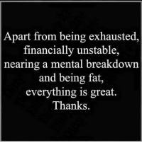 exhausted: Apart from being exhausted,  financially unstable,  nearing a mental breakdown  and being fat,  everything is great.  Thanks.