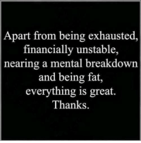Fat, Breakdown, and Great: Apart from being exhausted  financially unstable,  nearing a mental breakdown  and being fat,  everything is great.  Thanks.