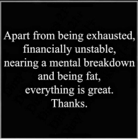Fat, Breakdown, and Great: Apart from being exhausted,  financially unstable,  nearing a mental breakdown  and being fat,  everything is great.  Thanks.