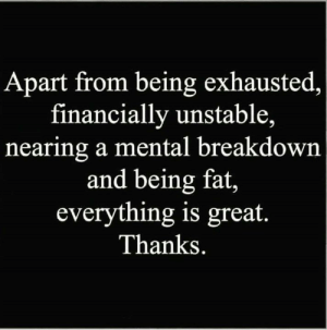 Memes, Fat, and 🤖: Apart from being exhausted,  financially unstable,  nearing a mental breakdown  and being fat,  everything is great  Thanks.