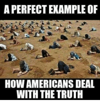 Stupid American Sheeple!: APERFECT EXAMPLE OF  HOW AMERICANSDEAL  WITH THE TRUTH Stupid American Sheeple!