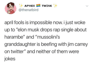 "Reality is becoming a bad acid trip. by PepperSalt902 MORE MEMES: APHEXTWINK  @thenatbird  april fools is impossible now. i just woke  up to ""elon musk drops rap single about  harambe"" and ""mussolini's  granddaughter is beefing with jim carrey  on twitter"" and neither of them were  jokes Reality is becoming a bad acid trip. by PepperSalt902 MORE MEMES"