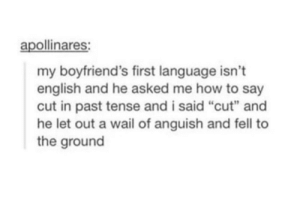 "Brain, How To, and English: apollinares  my boyfriend's first language isn't  english and he asked me how to say  cut in past tense and i said ""cut"" and  he let out a wail of anguish and fell to  the ground His brain probably got fried"