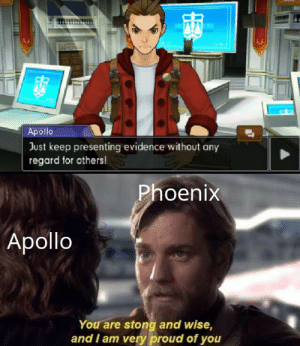 True, Apollo, and Phoenix: Apollo  Just keep presenting evidence without any  regard for others!  Phoenix  Apollo  You are stong and wise,  and I am very proud of you My true succesor!