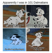 Apparently, Hungry, and Elephant: Apparently I was in 101 Dalmatians  I'm so hungry ucould eat yDid you bring me anything  a whole elephant.  to eat  'm tired and Pm hungry  I'm hungry Mother.  l really am
