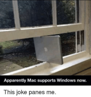 I hate myself: Apparently Mac supports Windows now.  This joke panes me. I hate myself