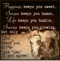 Memes, 🤖, and Mafia: appiness keeps you sweet,  criouu keeps you human,  e keeps you humble,  uccess keeps you  glowing,  But only  keeps you  going.  pe yes'  if you agree The Horse Mafia <3