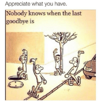 TheGoodQuote: Appreciate what you have  Nobody knows when the last  goodbye is TheGoodQuote