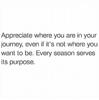 "Bae, Journey, and Memes: Appreciate where you are in your  journey, even if it's not where you  want to be. Every season serves  its purpose. Single ladies: be grateful for this season! We should call this the ""working season"" coz there is work to do while we wait. Hey listen, you might be in your feelings right now but imagine how many people spend their entire single season miserable, desiring a relationship to the point they rush to get bae and we all know how that ends....in disaster. You've probably heard people say so yourself ""I wasn't ready"". If you had settled down before now it probably would have ended in the same way. Take your focus off him for a sec. He's coming. We're going to focus on Him. We're going to heal. We're going to grow. This time you won't just look the part you will be the part on the inside as well. Blackcitygirl"