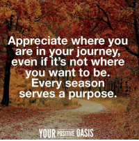 Journey, Memes, and Oasis: Appreciate where you  are in your journey,  even if it's not where  you want to be,  Every season  Serves a purpose.  YOUR POSITIVE OASIS