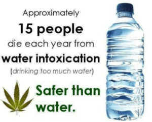 Truth be Told: Approximately  15 people  die each year from  water intoxicatio  (drinking too much water)  Ψ water.hanb Truth be Told