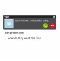 Bad, Horses, and Memes: approximately 92 sobbing horses calling..  dangerhamster:  what do they want this time if i stop posting its probably bc i died from heat stroke (before people start saying the weathers not even that bad and that its worse where they live, remember this: i am weak, that is all)