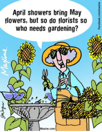 Dank, Flowers, and April: April showers bring May  flowers, but so do florists so  who needs gardening?  Maxine.com April showers bring May flowers, but so do florists so who needs gardening?