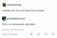 Pets, Humans of Tumblr, and Candles: aprilwitching  candles are how we keep fires as pets  annabellioncourt  this is unnecessarily adorable  Source: aprilwitching  222,715 notes