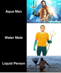 Memes, Good, and Http: Aqua Man  Water Male  Liquid Person Aquaman memes on the rise, good short term investment! via /r/MemeEconomy http://bit.ly/2FzaQdE