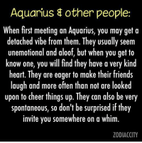 Friends, Love, and Aquarius: Aquarius other people:  When first meeting an Aquarius, you may get a  detached Vibe from them. They usually seem  unemotional and aloof, but when you get to  know one, you will find they have a very kind  heart. They are eager to make their friends  laugh and more often than not are looked  upon to cheer things up. They can also be very  spontaneous, so don't be surprised if they  invite you somewhere on a whim.  ZODIACCITY Nov 18, 2016. A favorable day for love. If you were reluctant to take a step toward the person you like, now you should do it, without any fear   ....FOR FULL HOROSCOPE VISIT: http://horoscope-daily-free.net
