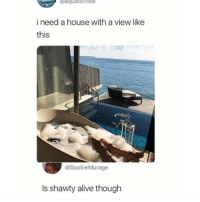 Alive, Instagram, and Meme: aquaticvibe  i need a house with a view like  this  @SookieMurage  Is shawty alive though @pubity was voted 'best meme account on Instagram' 😂
