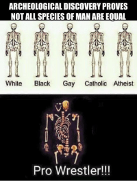 Confused, Definitely, and Memes: ARCHEOLOGICAL DISCOVERY PROVES  NOT ALL SPECIES OF MAN AREEOUAL  White  Black  Gay Catholic Atheist  Pro Wrestler!!! ABOUT THAT HIP OPERATION  I guess I should've said something when I started getting prayers and well wishes from friends and colleagues alike – including some of the biggest names in the business. I have definitely mentioned that I needed a hip replacement, definitely mentioned that I intended to get one sometime early in 2017, but never actually set a date. I have this little tiny problem in that I don't actually have health insurance.  I had health insurance for 26 years, but the last four years have been tough – with companies sending out letters telling me they will no longer be insuring families, and that I needed to find alternate insurance. By 2016 health insurance was particularly confusing, and after missing one payment, I found myself no longer insured. I am doing my best to be insured in 2017, but nothing is guaranteed, and I have no idea how this new insurance company will feel about replacing a hip that clearly should've been replaced many years ago.  For those wondering why the general manager of Raw needs to procure his own health insurance: well, I'm on a handshake deal. I do the job as long as I enjoy it and feel like I am making a difference, and I do it as long as WWE is happy with me and thinks I'm the best person for the role. No contract involved at all, except for the legends deal, which is strictly about merchandise. For those wondering why I just don't pay out-of-pocket, well it's a $60,000 operation, and I am going to look at some other options before I shell out 60K for an operation. Maybe I will concentrate on landing a couple of TV or film roles and get the far superior AFTRA insurance to take care of the operation. I probably should not be talking about it at all – but the word is out there, and I feel like I owe people an explanation.   Luckily, I am used to the constant pain – and it's not like I wasn't warned by almost every  guy in the wrestling business that the moves I was doing as a younger man were going to come back to haunt me. Well, they're haunting me! The weight-loss has helped considerably; without it, and the DDP yoga, I don't believe I could even get through airports. But the constant travel means constant pain. I love being the Raw GM, and I will miss it when it's gone. But my quality of life will probably improve when Stephanie and WWE decide to go in a new direction.  Thank you for your prayers and concern. I am coming off an amazing December, during which I created some memories that I know I will hold onto for a lifetime. I know a lot of people don't get my whole Santa thing. I can only tell you that when that red suit goes on, the very best part of me comes out, and I do some things I am very proud of each December.  I had wanted most of December off, but I had made a commitment to the Pittsburgh Children's Hospital, and it meant a lot to me to fulfill that commitment. Then Mr. McMahon said something to me about a shark cage in question with Chris Jericho suspended above it, and I knew I had to be at that Raw. I missed Monday's raw. I should be back for almost every episode until that moment comes when/if the company decides to go in a different direction. If they do, I will simply be grateful for every single day I had a chance to go out and try to make a difference. Some nights I was more successful than others. But deep down I think the superstars in the back know I was doing my best to look out for them - and they know that has not always the case when it comes to the people who fill these roles.   With or without a new hip I'm going to lead a good life. The medical sciences out there to help me lead a life with far less pain. I hope that I am given the opportunity to take advantage of the new technology. Maybe some enterprising orthopedic specialist can think outside the box and look at me as a potential poster-boy for their services. If The Rock can sell tires, then I have to believe I can sell hip replacements.   Have a nice day.