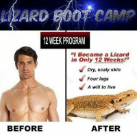 """Live, Camp, and Skin: ARD GOOT CAMP  12 WEEK PROGRAM  """"I Became a Lizard  in Only 12 Weeks!'""""  Dry, scaly skin  Four legs  A will to live  BEFORE  AFTER"""