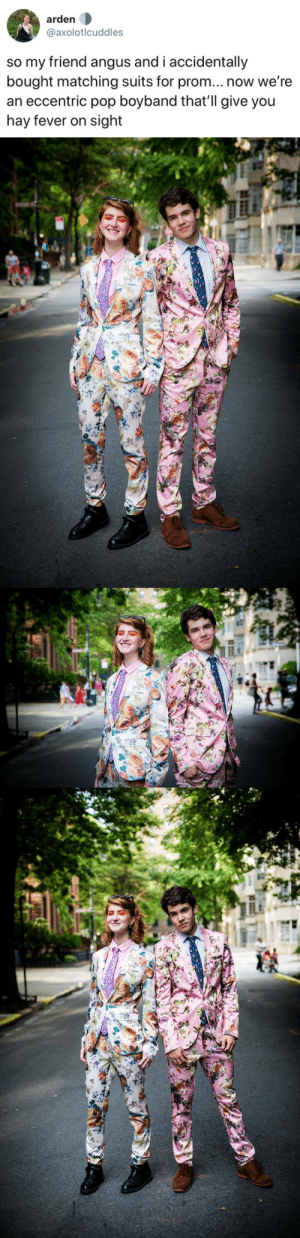 tastefullyoffensive:  (via axolotlcuddles): arden  @axolotlcuddles  so my friend angus and i accidentally  bought matching suits for prom... now we're  an eccentric pop boyband that'll give you  hay fever on sight tastefullyoffensive:  (via axolotlcuddles)
