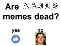 SMASH THAT LIKE BUTTON FAM -CA$H $KULL: Are NA-311  memes dead?  yes  no SMASH THAT LIKE BUTTON FAM -CA$H $KULL
