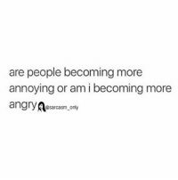 Funny, Memes, and Angry: are people becoming more  annoying or am i becoming more  angry  @sarcasm only ⠀
