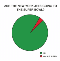 😂 (Credit: NFL Humor): ARE THE NEW YORK JETS GOING TO  THE SUPER BOWL?  ■ NO  NO, BUT IN RED 😂 (Credit: NFL Humor)