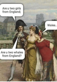 England, Girls, and MeIRL: Are u two girls  from England;  Wales  Are u two whales  from England? meirl