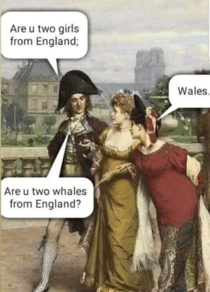 England, Girls, and Wales: Are u two girls  from England;  Wales.  Are u two whales  from England? Are you?