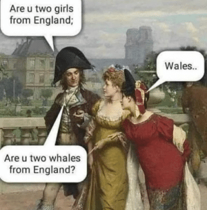 England, Girls, and Good: Are u two girls  from England;  Wales..  Are u two whales  from England? Gottem good.