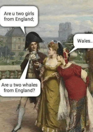 meirl by Kamilokk MORE MEMES: Are u two girls  from England;  Wales  Are u two whales  from England? meirl by Kamilokk MORE MEMES