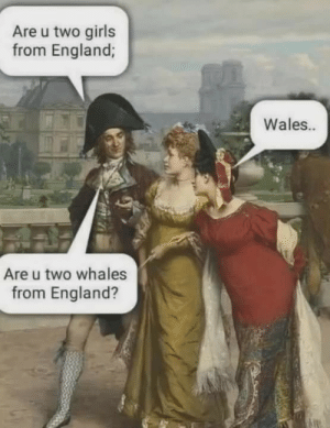 srsfunny:Whale what do we have here?: Are u two girls  from England;  Wales..  Are u two whales  from England? srsfunny:Whale what do we have here?