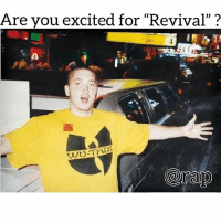 "Hype, Memes, and Ed Sheeran: Are vou excited for ""Revival""? Eminem's Revival will feature Pink, Skylar Grey, Kehlani, Phresher, Ed Sheeran, Alicia Keys & more. Are you hype for the album?"