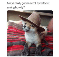 Http, Via, and bit.ly: Are ya really gonna scroll by without  saying howdy? Yeehaw 🤠 via /r/wholesomememes http://bit.ly/2UrLqSt