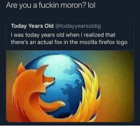 Funny, Lol, and Firefox: Are you a fuckin moron? lol  Today Years Old @todayyearsoldig  I was today years old when i realized that  there's an actual fox in the mozilla firefox logo Goodmorning all @larnite • ➫➫➫ Follow @Staggering for more funny posts daily!
