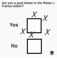 Goals, Memes, and France: Are you a goal-kicker in the Wales v  France match?  Yes  No  RUGBY  MEMES  nstagram They should just all stick to drop goals 😉🏴󠁧󠁢󠁷󠁬󠁳󠁿🇫🇷 rugby wales france sixnations