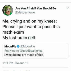 Crying, Brain, and Math: Are You Afraid? You Should Be  @despacitowo  Me, crying and on my knees  Please I just want to pass this  math exam  My last brain cell  MoonPie @MoonPie  Replying to @goodbeanjokes  Sweet beans are made of this  1:01 PM 04 Jun 18 Me irl