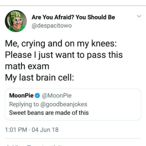 Crying, Brain, and Math: Are You Afraid? You Should Be  @despacitowo  Me, crying and on my knees:  Please I just want to pass this  math exam  My last brain cell:  MoonPie@MoonPie  Replying to @goodbeanjokes  Sweet beans are made of this  1:01 PM 04 Jun 18 Made of beans
