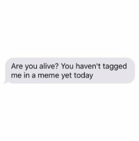 Are You Alive: Are you alive? You haven't tagged  me in a meme yet today