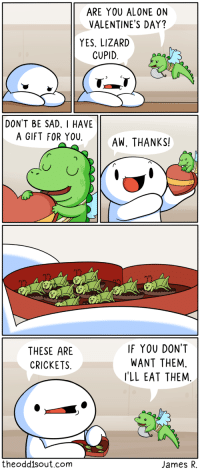 memes: ARE YOU ALONE ON  VALENTINE'S DAY?  YES, LIZARD  CUPID  DONT BE SAD. I HAVE  A GIFT FOR YOUAW, THANKS!  THESE ARE  CRICKETS  IF YOU DONT  WANT THEM,  'LL EAT THEM  theodd1sout.com  James R. memes