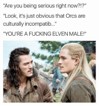 """Sent by Daniel, a patriot.: Are you being serious right now?!?""""  """"Look, it's just obvious that Orcs are  culturally incompatib..""""  """"YOU'RE A FUCKING ELVEN MALE!"""" Sent by Daniel, a patriot."""