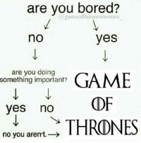 No You Are: are you bored?  a gameofthronesmemes  yes  no  are you doing  something important?  GAME  OF  yes  no  THRONES  no you aren't.