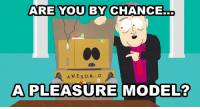 Lame! Not cool! Totally lame!: ARE YOU  BY CHANCE.  dllb  A.W.E.s.0. M. O  A PLEASURE MODEL? Lame! Not cool! Totally lame!