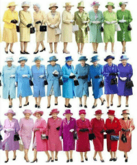 Funny, Queen, and Via: Are you even the Queen if you dont come in every colour. via /r/funny https://ift.tt/2QD9uDR