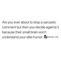 Funny, Memes, and Brain: Are you ever about to drop a sarcastic  comment but then you decide against it  because their small brain won't  understand your elite humor. Aesarcasm.only SarcasmOnly