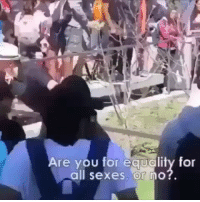 Memes, 🤖, and How: Are you for equality for  Il sexes, or no?.  al How dare she touch his F E D O R A