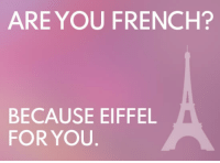Eiffel Tower Urban Dictionary: ARE YOU FRENCH?  BECAUSE EIFFEL  FOR YOU