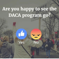 I give it a big thumbs up! What do you think? Are you happy to see it go? Proud Southern Deplorables: Are you happy to see the  DACA program go?  Yes  No I give it a big thumbs up! What do you think? Are you happy to see it go? Proud Southern Deplorables
